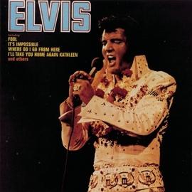 Elvis Presley альбом Elvis (Fool)