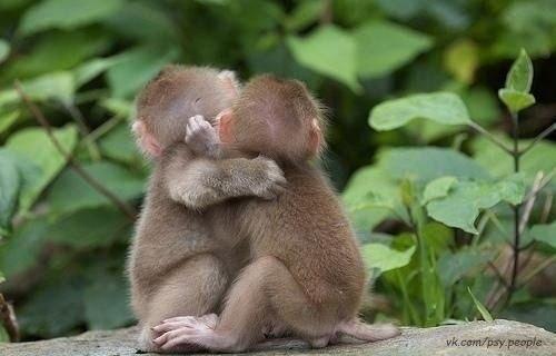 Не бойтесь лишний раз обнять близкого человека и сказать, как вы его любите. Пусть лучше будет этот раз лишним, чем недостающим.
