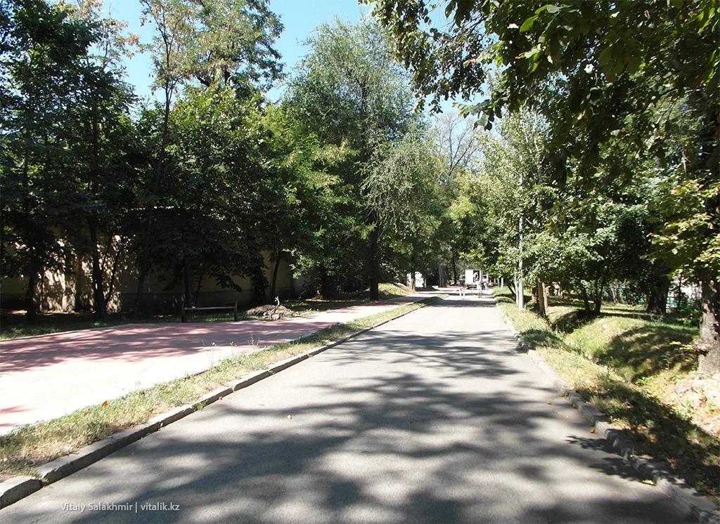 Асфальт, дорога в Центральном Парке Горького Алматы