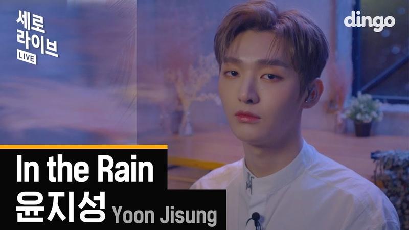 워너원 첫 솔로로 아련미 뒤집어 쓴 🍚윤지성🍚 세로라이브 ㅣ in the Rain l SERO l Live [딩고뮤직]