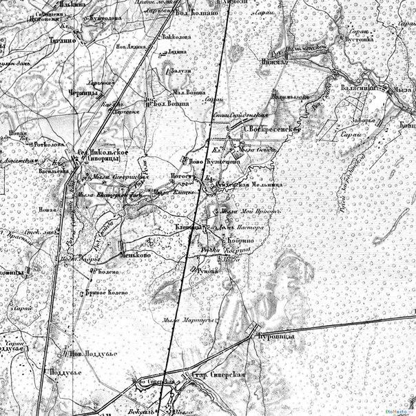 топографическая карта пушкинского района