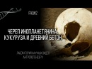 Александр Соколов Череп инопланетянина кукуруза и древний бетон