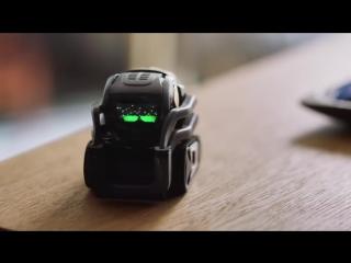 Anki _ Vector_ The Good Robot _ The Decision