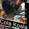 Cola Koala (Live-сет) в China-Town-Cafe