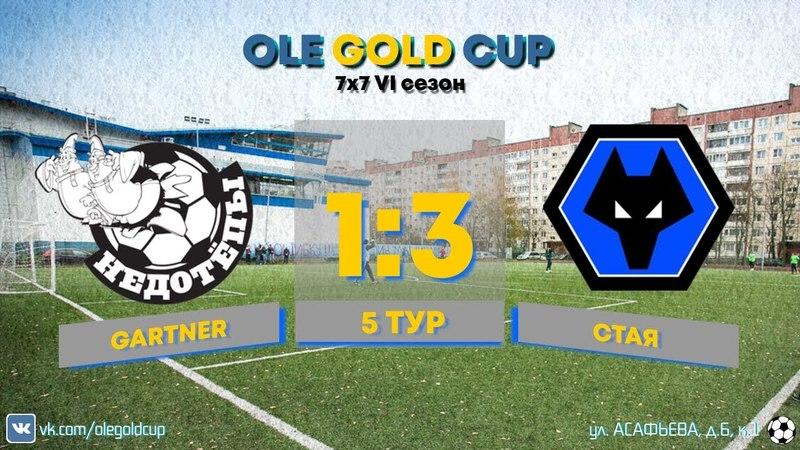 Ole Gold Cup 7x7 VI сезон. 5 ТУР. СТАЯ - GARTNER
