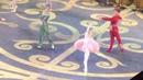 Вариация Авроры Евгения Образцова в балете Спящая Красавица