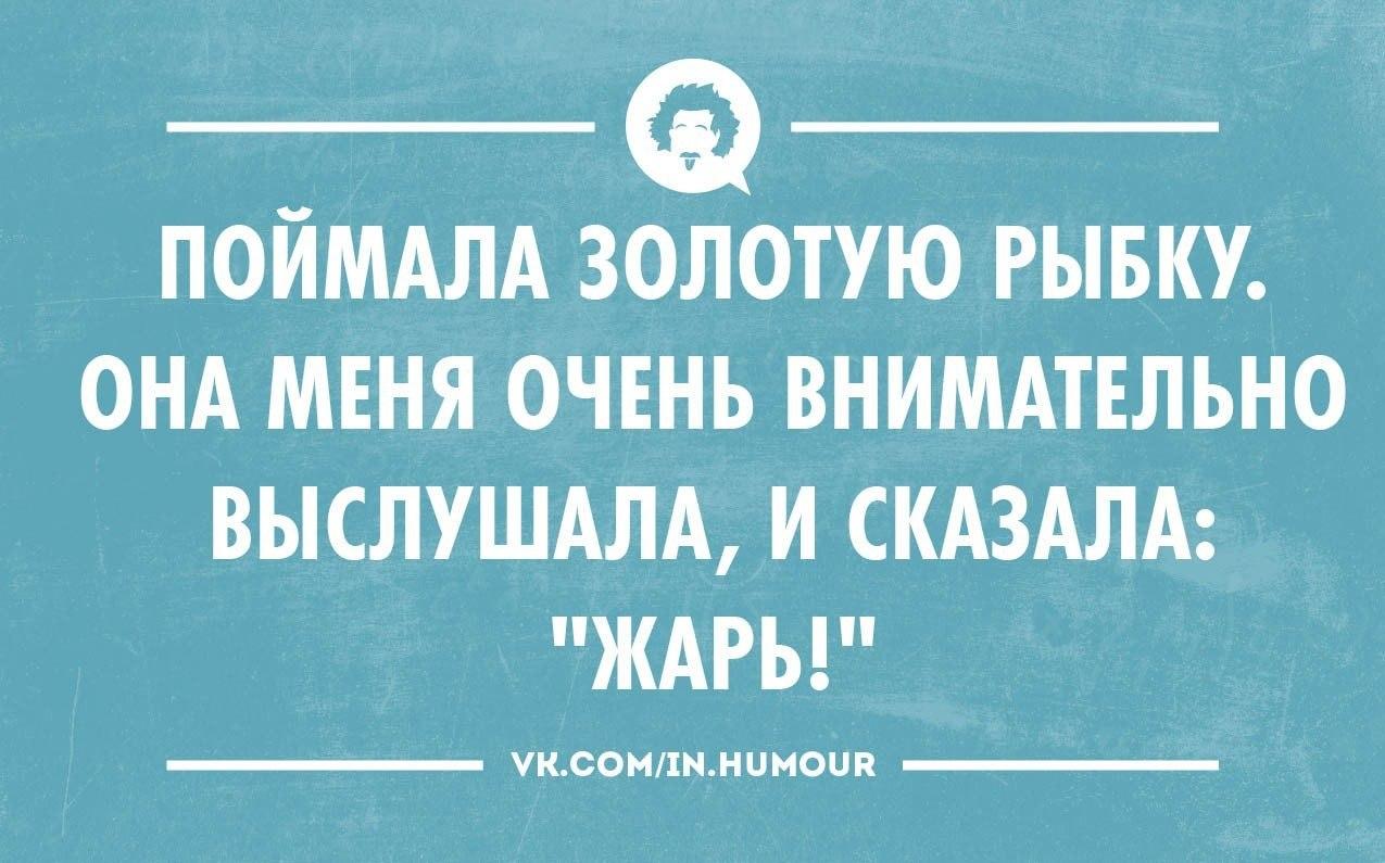 https://pp.vk.me/c618224/v618224486/d038/QqqQ8EEF9Ak.jpg