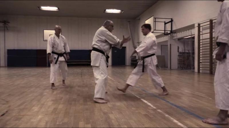 Sensei Gyula Büki 7th Dan Shotokan Karate
