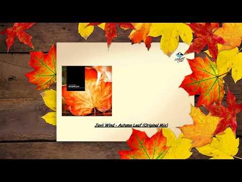 Javii Wind - Autumn Leaf (Original Mix) [Midnight Aurora]
