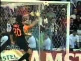 Психованные голы Роберто Карлоса the best goals