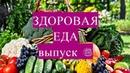 Здоровая еда Смузи Апельсин Ботва свеклы Выпуск 6
