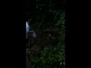 кленовая гора родник зелёный ключ
