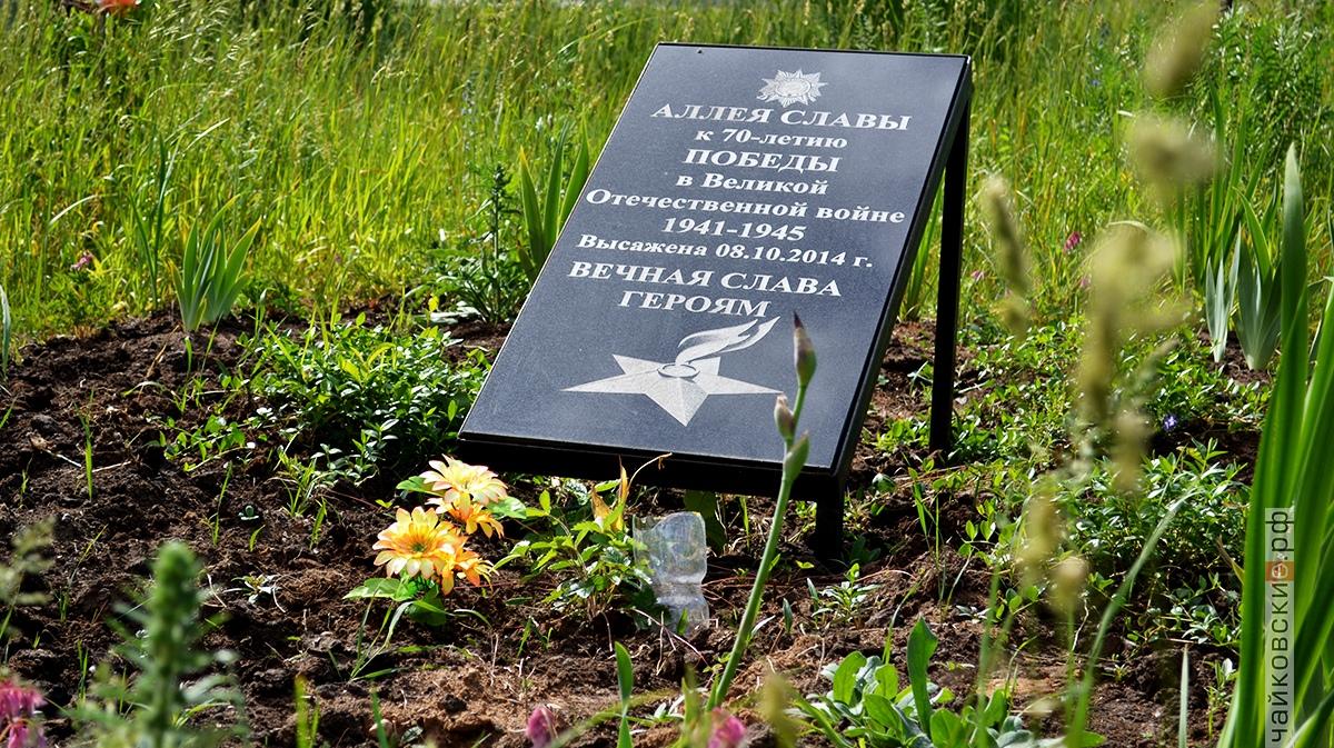 аллея ветеранской славы, чайковский район, 2019 год