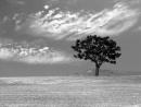 Гусейн Манапов - Небо Над Землей_HIGH