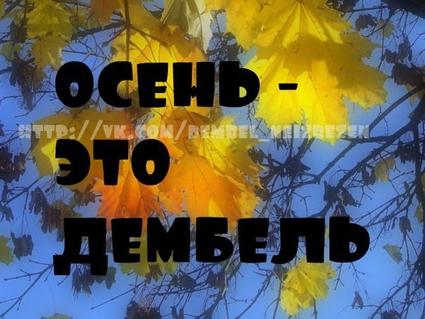 http://cs617228.vk.me/v617228207/114c4/S9aDkyMN6Po.jpg