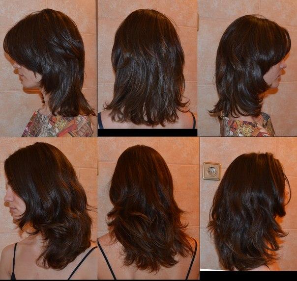Отрасли или отросли волосы