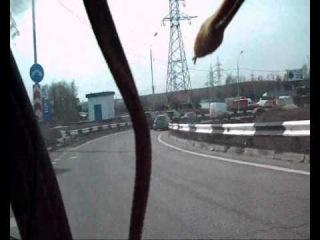 Ядовитые змеи атакуют Москву (18+)