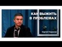 Наши лучшие друзья — это проблемы Сергей Гаврилов