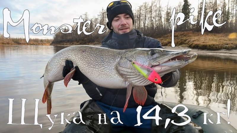 Северные злые щуки! (часть 3). Огромная щука на 14 кг! Nothern monster pike fishing. DF 32