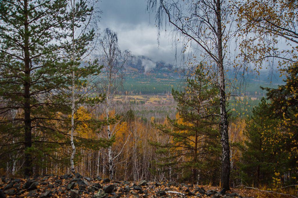 Осенняя палитра (05.11.2014)