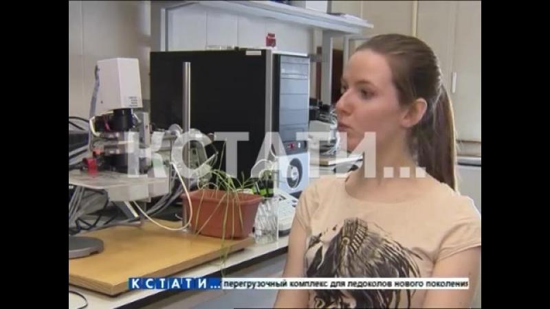 Кстати Новости Нижнего новгорода - Уникальный метод диагностики растений разработали нижегородские ученые