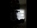 15.04.18 Ребята танцуют, веселятся с Мишкой Тедди