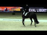 Edward Gal et Glock's Undercover Final World Cup Lyon 2014 RLM