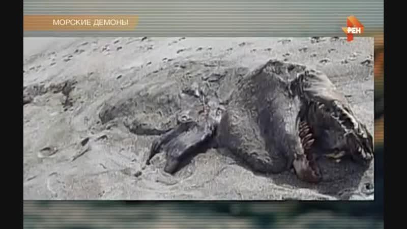 То,что сняла камера на дне Марианской впадины,не поддается объяснению.НЛО.Тайны