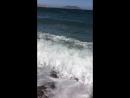 Новый свет Море с прохладой Чайки кричат Море супер IMG 2403