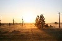 Картинка Природа, туман, рассвет, поле, дерево, утро, россия скачать бесплатно.  Картинки на рабочий стол пейзажи.