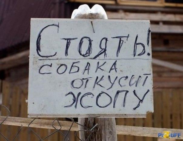 ржачные фото приколы: