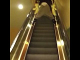 Instagram video by I T S J A Z M I N E