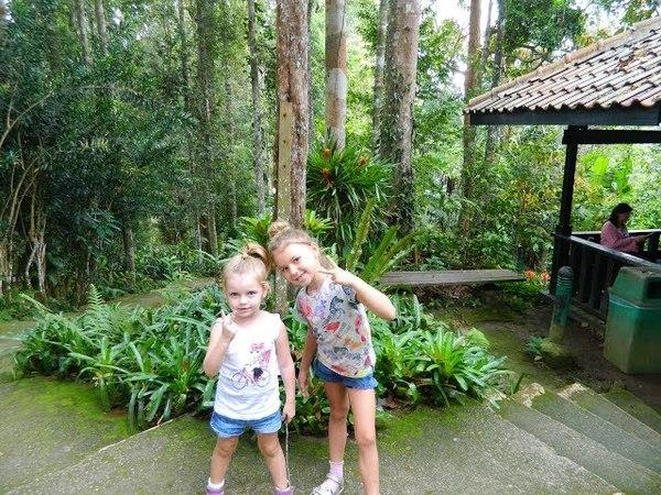 Bukit Tinggi. Японская деревня. Ботанический сад. Оленюшки. Французская деревня