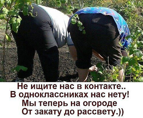 https://pp.userapi.com/c846122/v846122676/4aa9c/zrH-ZqTkKX0.jpg