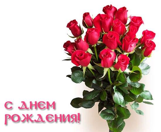 http://cs402328.vk.me/v402328464/60c0/IrC2JLijBRE.jpg
