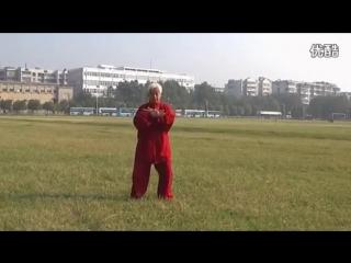 Янши сяоцзя тайцзицюань 杨氏小架太极拳 демонстрирует Юй Гоюн 俞国勇
