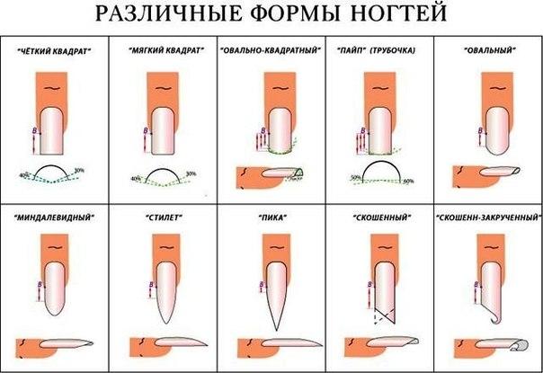 майя прикол: