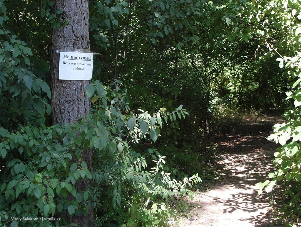 Тропинки между деревьев, Ботанический сад Алматы 2018
