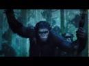 Рассвет планеты обезьян (Dawn of the Planet of the Apes) 2014