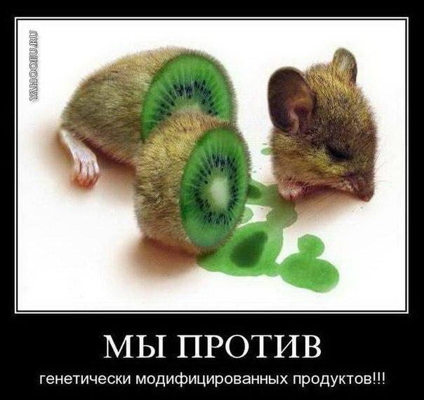 Ха-ха приколы! =D | ВКонтакте