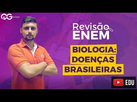 Biologia - Doenças brasileiras   Revisão ENEM - Profº Pedro Rocha