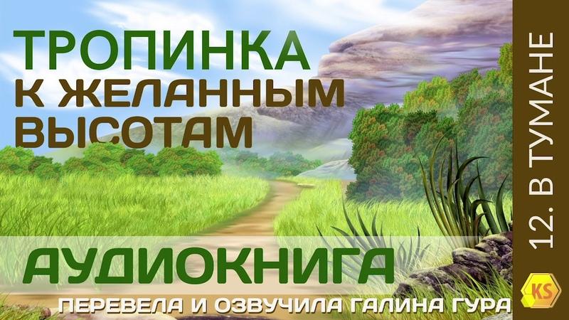 12. В тумане - Тропинка к желанным высотам - Галина Гура