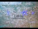 1 45 Гц Стимуляция гипоталамуса гипофиза шишковидной железы Бинауральные биения