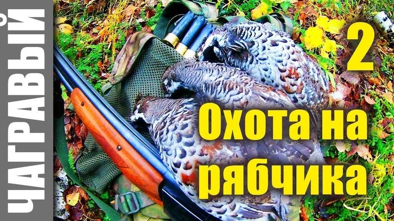 Охота на рябчика с манком - 2. Hunting for a hazel grouse with a mank - 2.