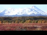 Осень в Кроноцком заповеднике.