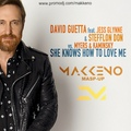 David Guetta feat. Jess Glynne &amp Stefflon Don vs. Myers &amp Kaminsky - She Knows How To Love Me (Makkeno Mash-up)
