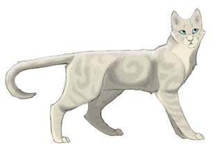 Картинки котов воителей без фона