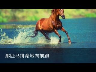 Обучающий видеоролик: лошадь