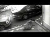 расстрел вора в законе Хикмета Мухтарова; Москва, 07.04.2006