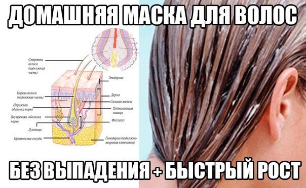 ШИКАРНЫЕ ВОЛОСЫ (Результат через 5 дней!) [Добавьте себе на стенку, чтобы не потерять!] О, эта вечная проблема с волосами, то они жирные, то сухие или - вдруг секутся кончики, хуже может быть только периодическое выпадения и так прихотливых волос - это так знакомо всем нам! Рецепты домашних масочек, помогут решить эту пооблему! Записывайте!! РЕЦЕПТ №1: - 1 желток яйца - 2 столовые ложки оливкового масла - 2 чайные ложки сахарного песка Читайте продолжение рецепта »